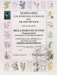 Flores-Bach-CH.jpg