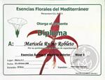 esencias-aureas-I-CH.jpg